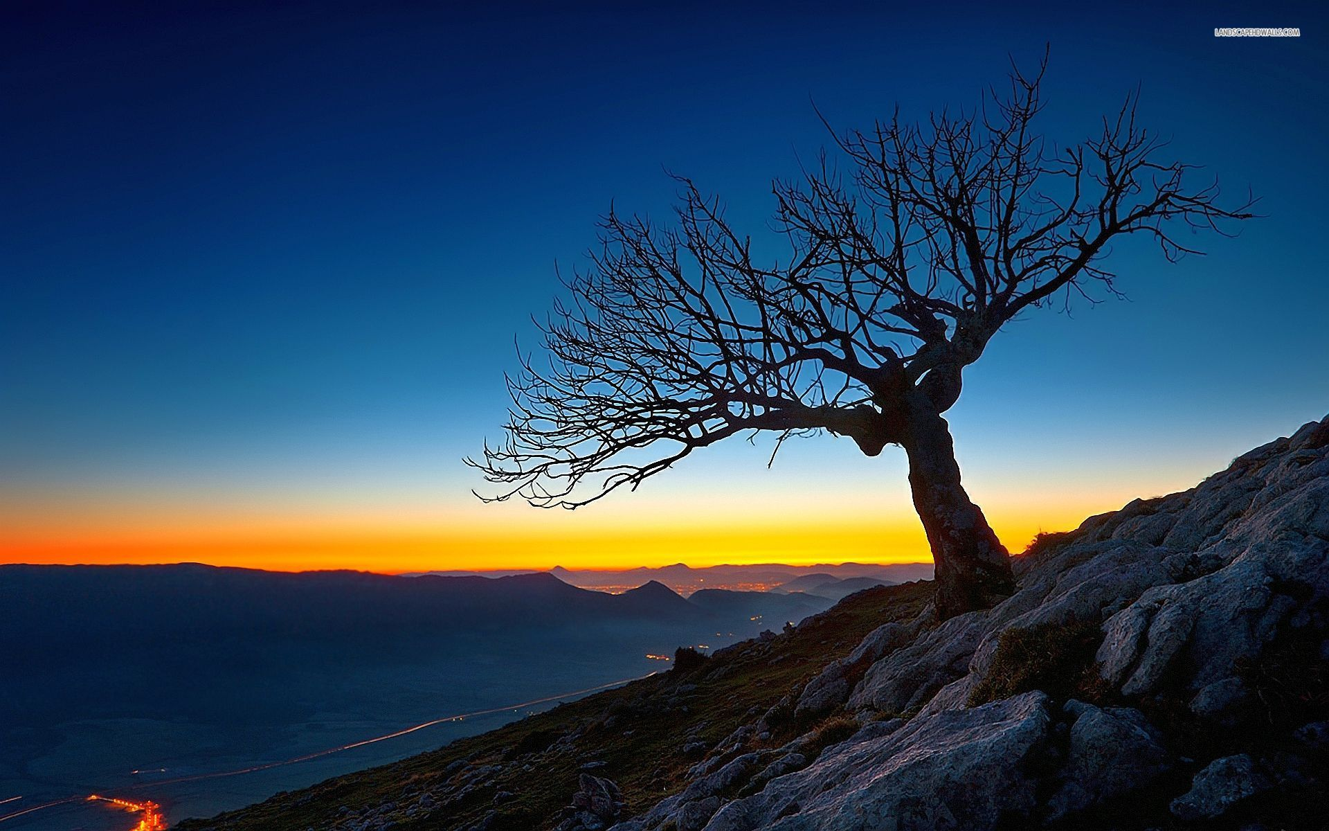 Mountains Tree Shadow Sunset Wallpapers Mountains Tree