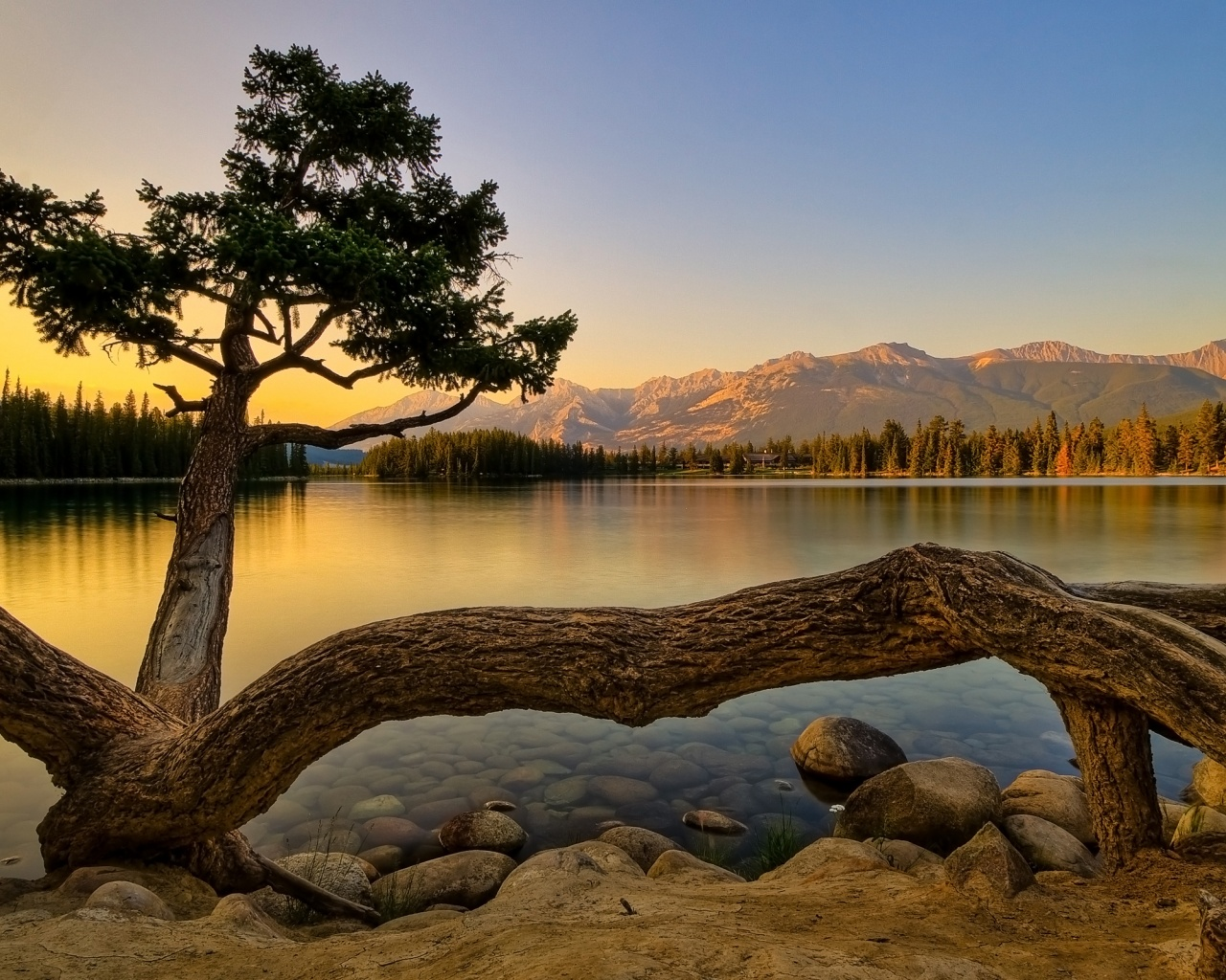 1280x1024 Nature, lakes, tree