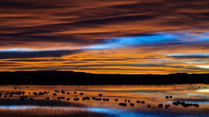 825x315 New Mexico Sunset Reflection Facebook Cover Photo
