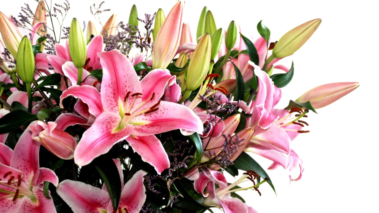 1280x800 Nice flower bouquet desktop PC and Mac wallpaper