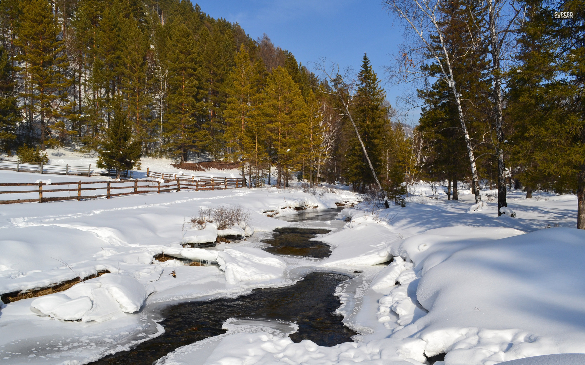 Nice Icy River Snow & Forest wallpapers | Nice Icy River ...