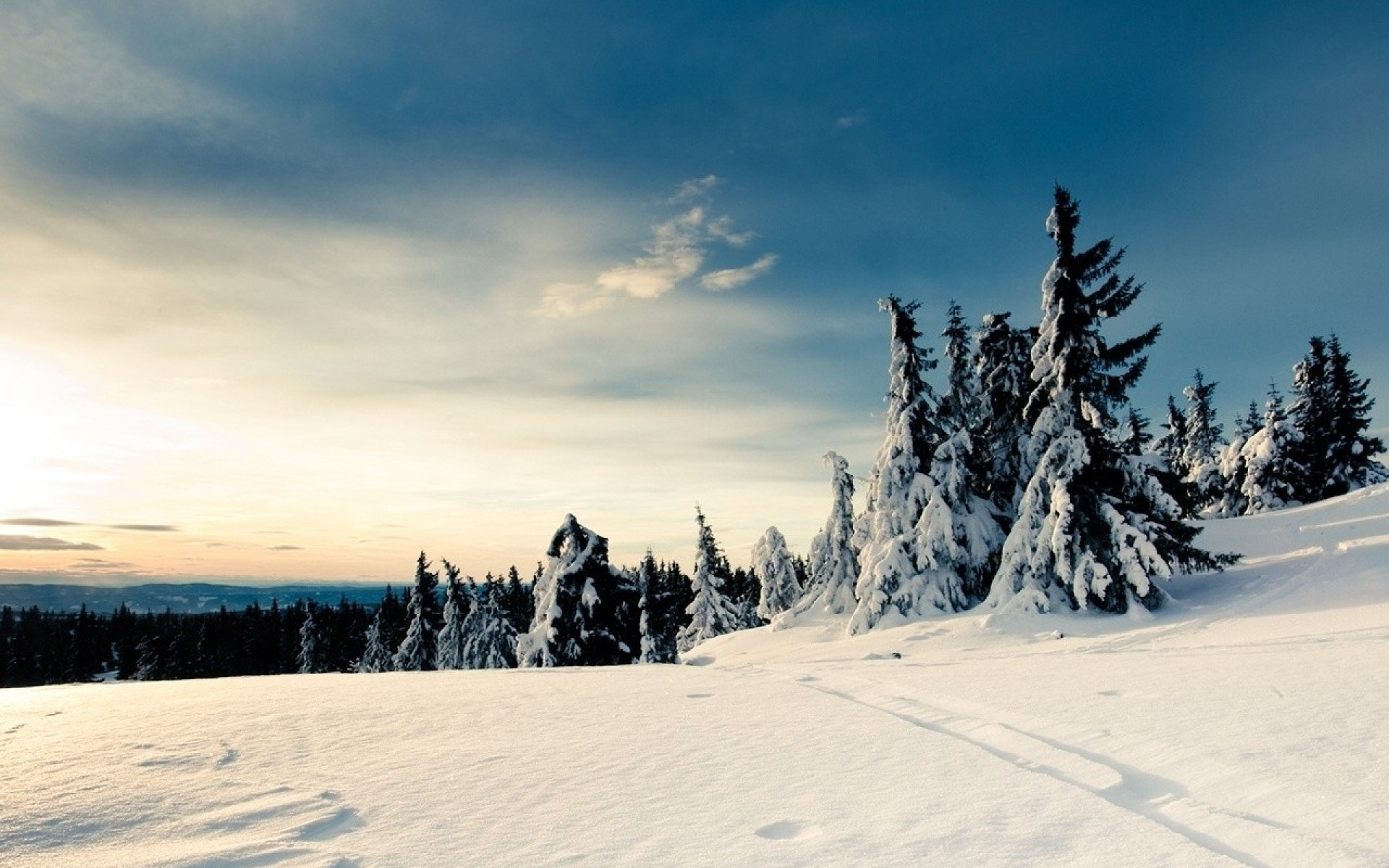 Nice Snow Landscape Wallpapers