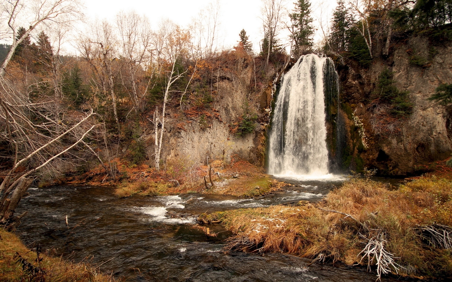 Nice Waterfall Cliffs Trees Wallpapers