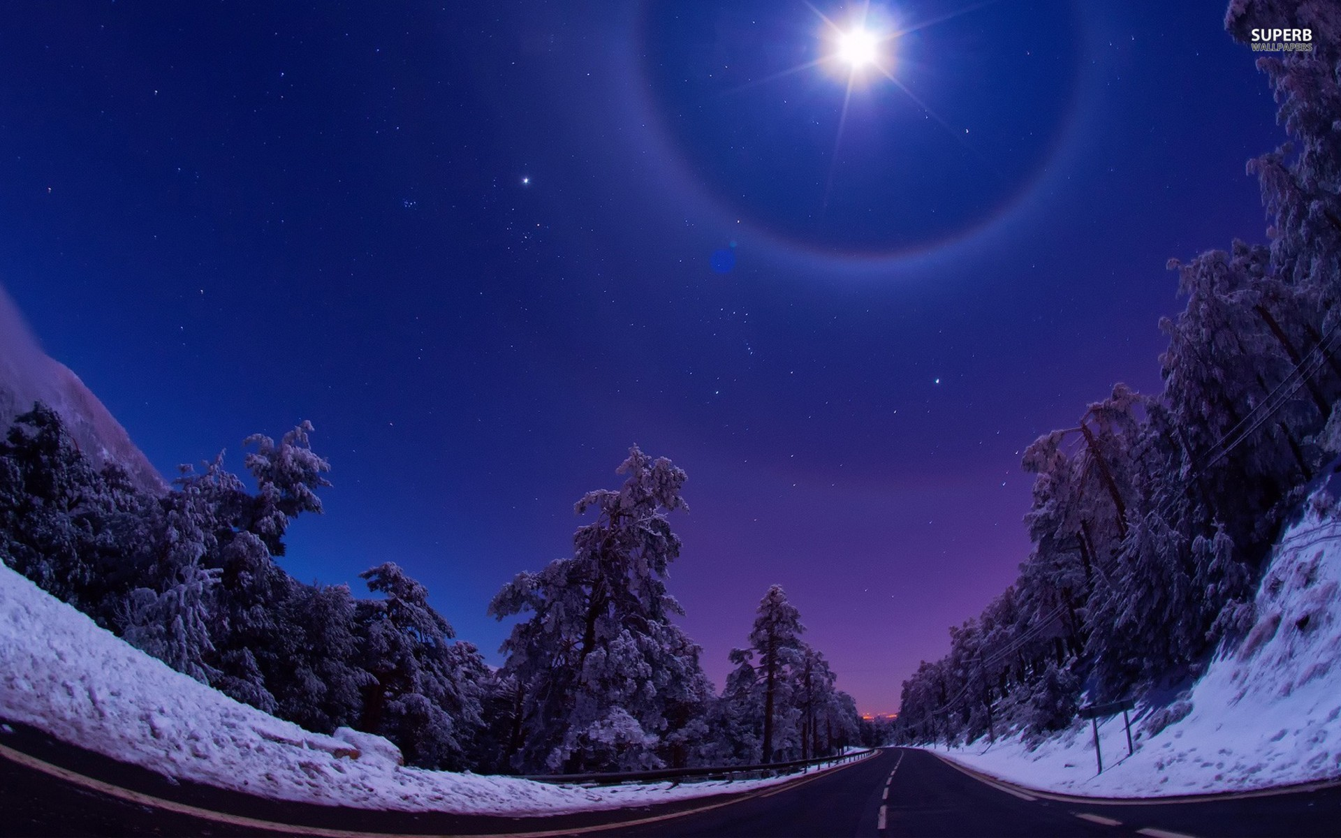 Night Star Road Trees Winter wallpapers | Night Star Road ...