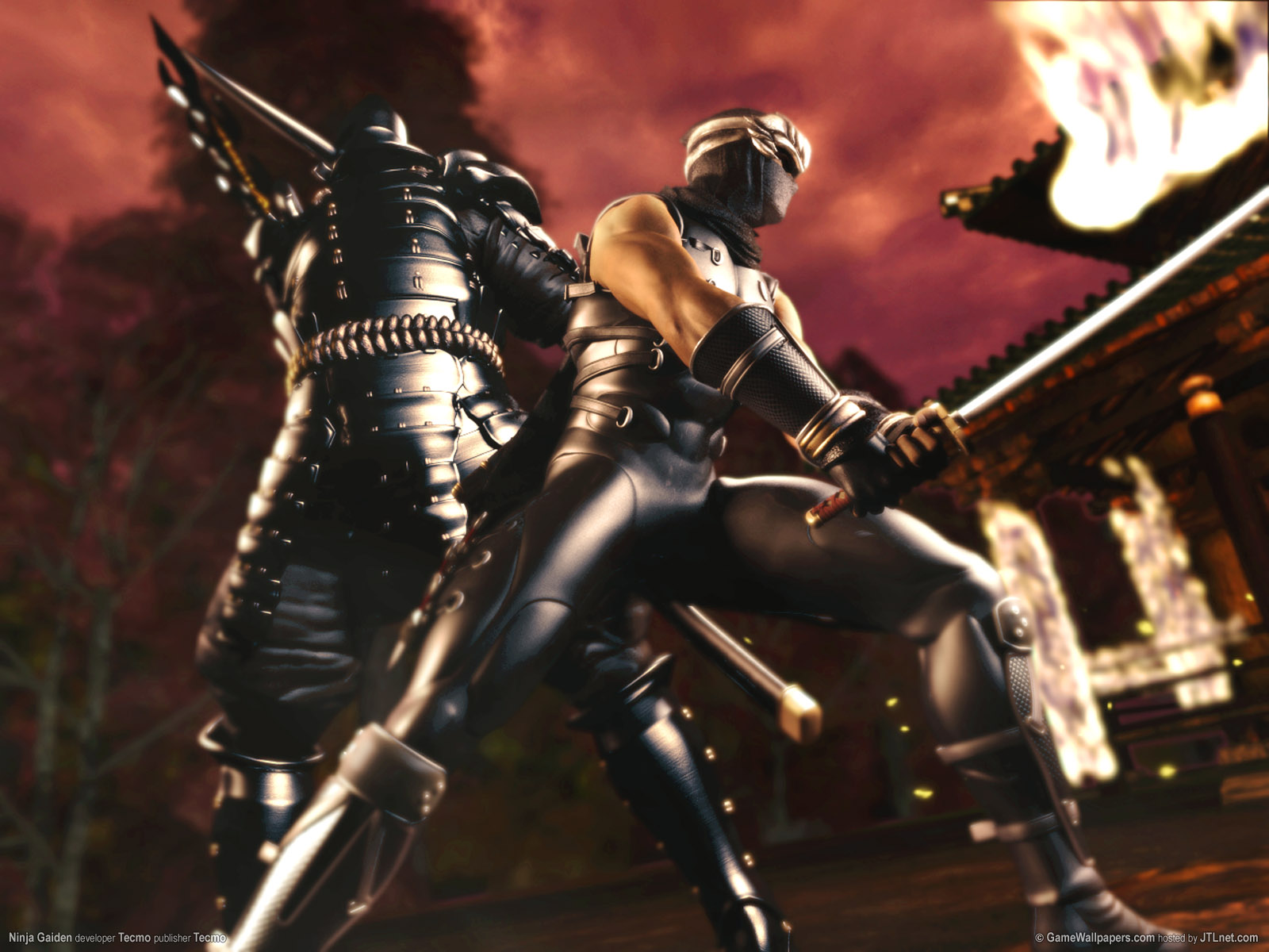 ninja gaiden wallpapers for desktop - photo #4