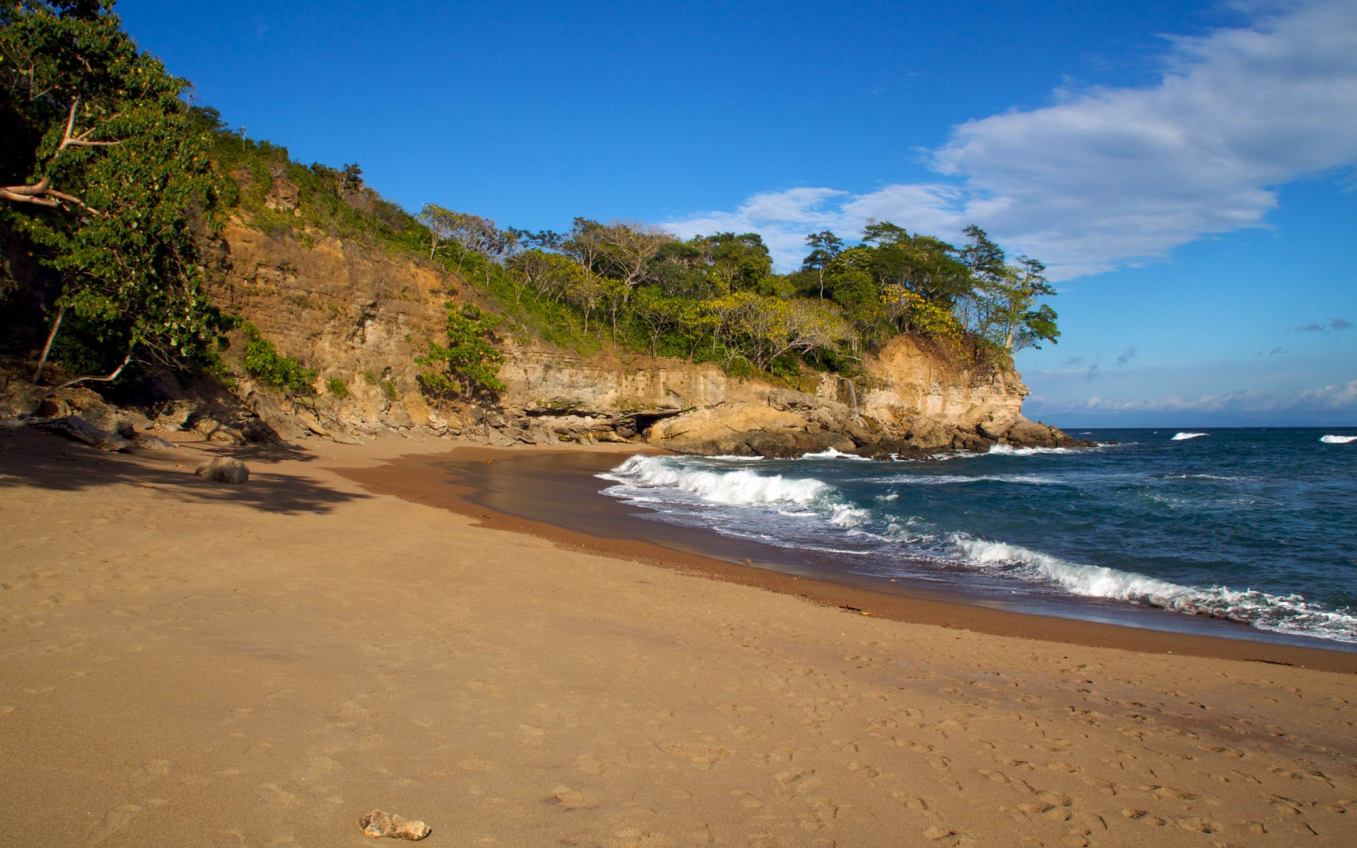 Image Ocean Cliff Trees Costa Rica Wallpapers And Stock Photos