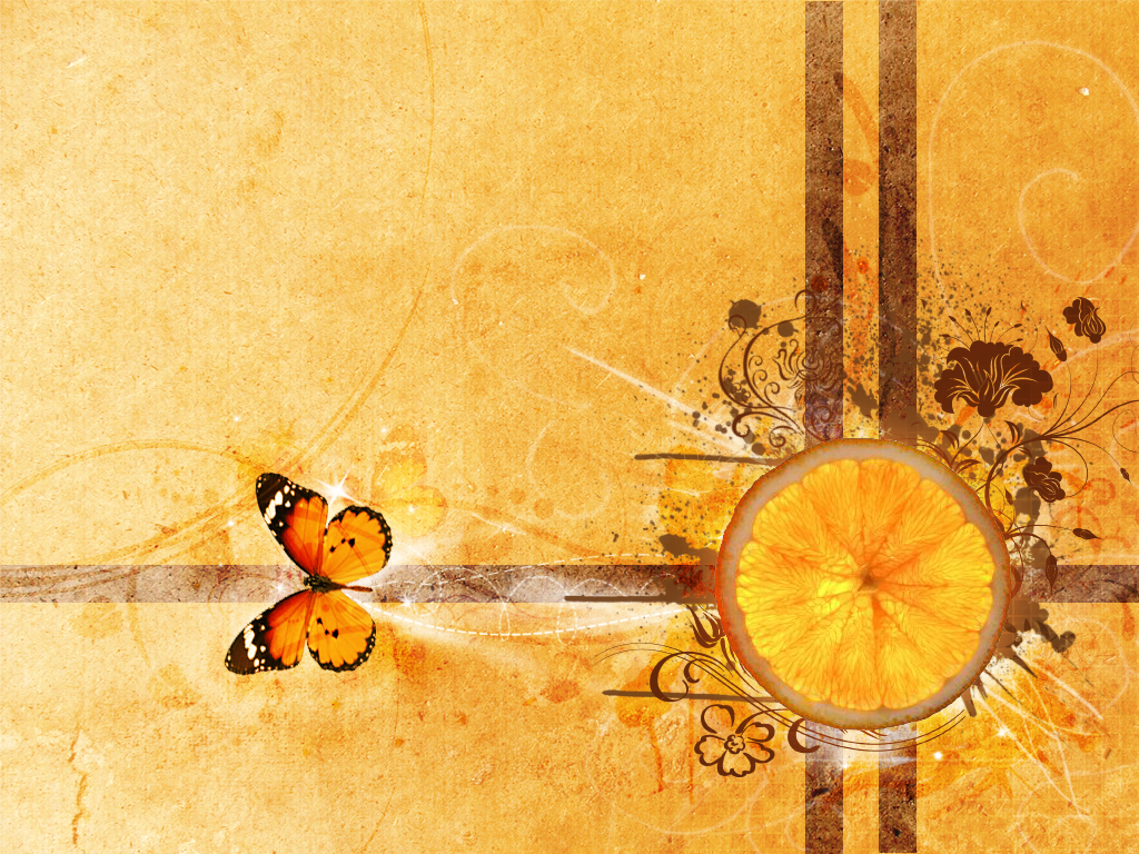 1024x768 Orange and butterfly desktop PC and Mac wallpaper