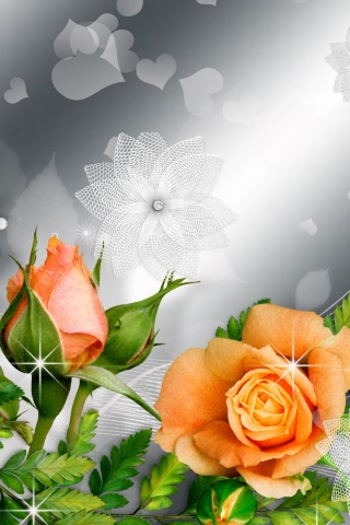 320x480 Orange Roses Silver Blossoms Iphone 3g Wallpaper