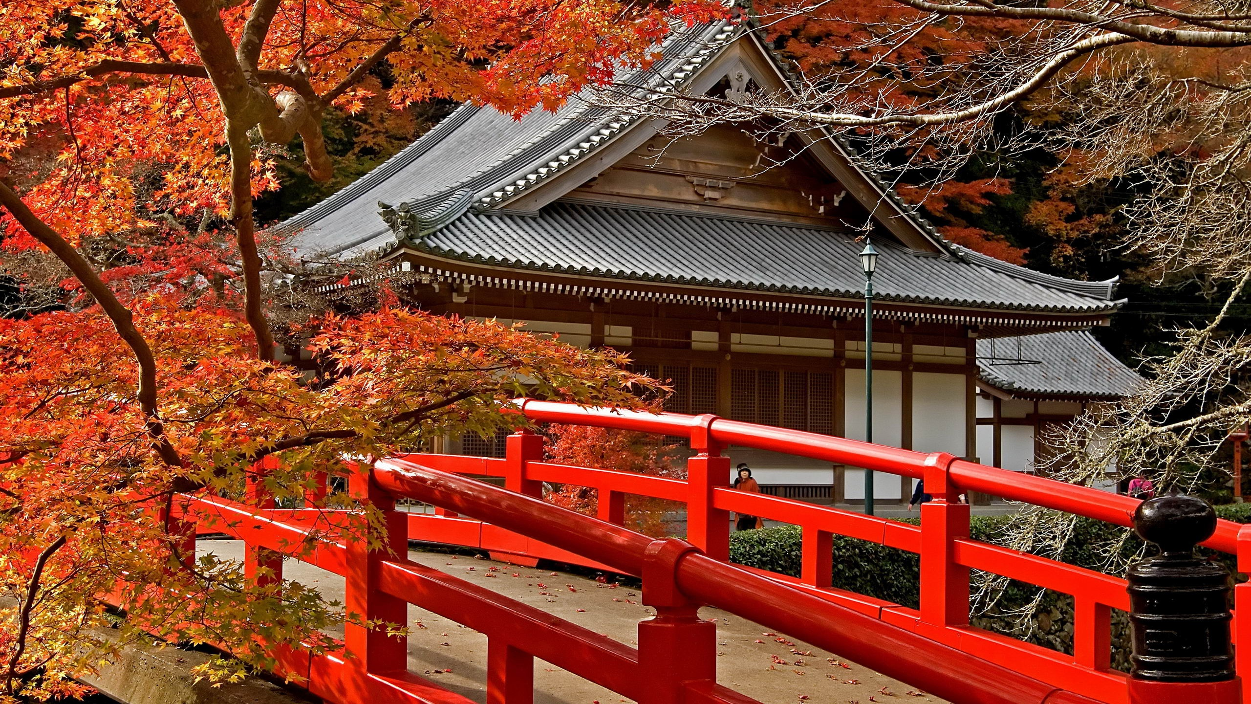 2560x1440 Pagoda Japan Maple Desktop PC And Mac Wallpaper
