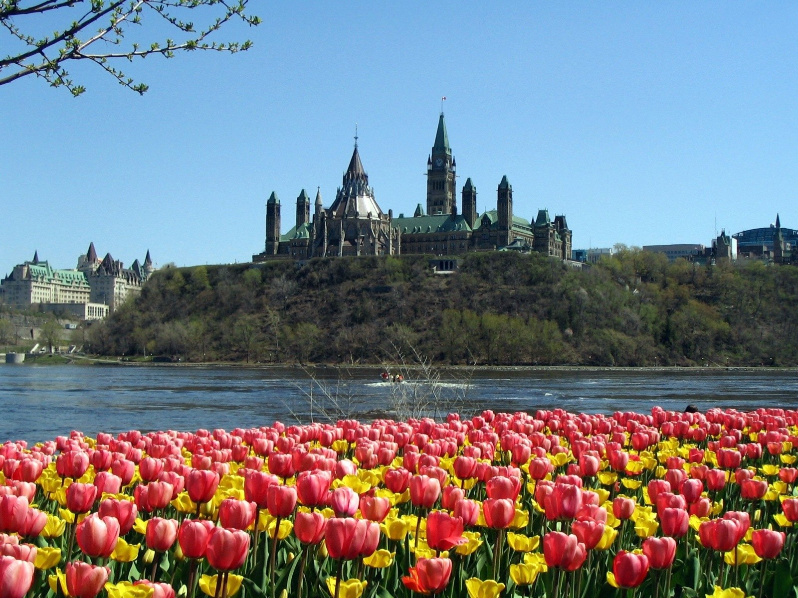 parliament hill wallpapers | parliament hill stock photos