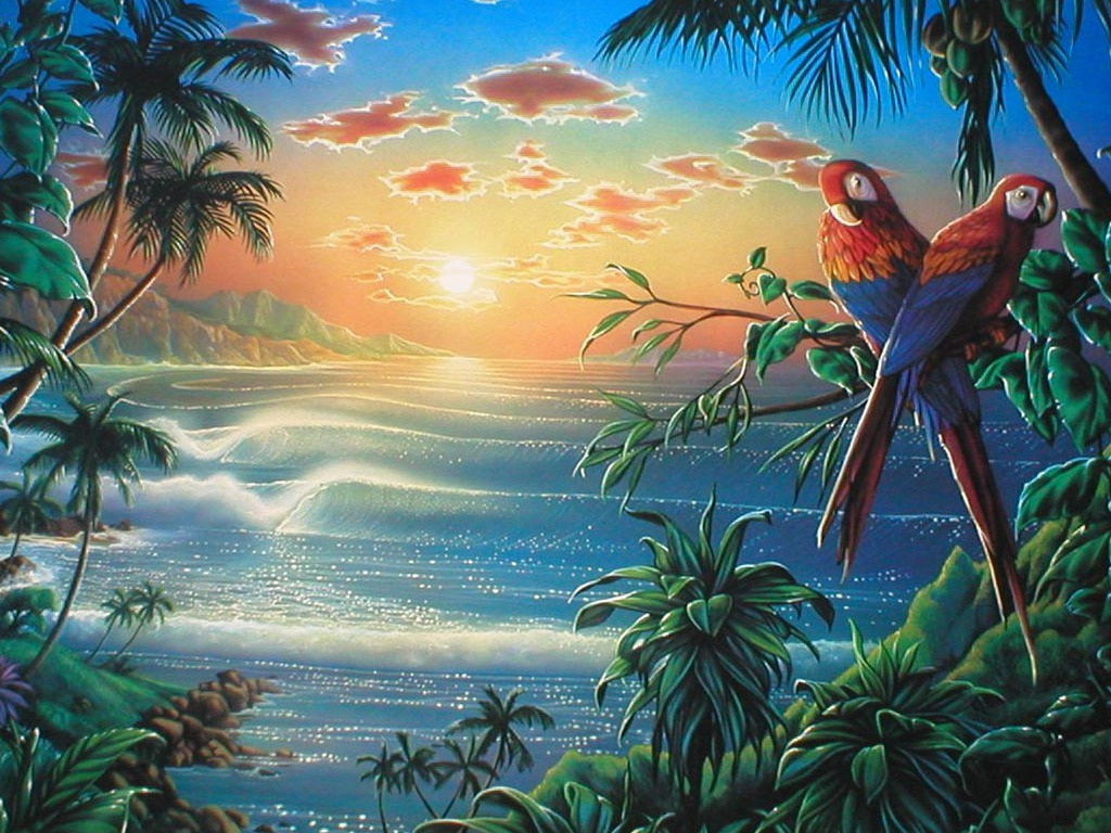 Parrots on the beach wallpapers parrots on the beach stock photos - Set video as wallpaper ...