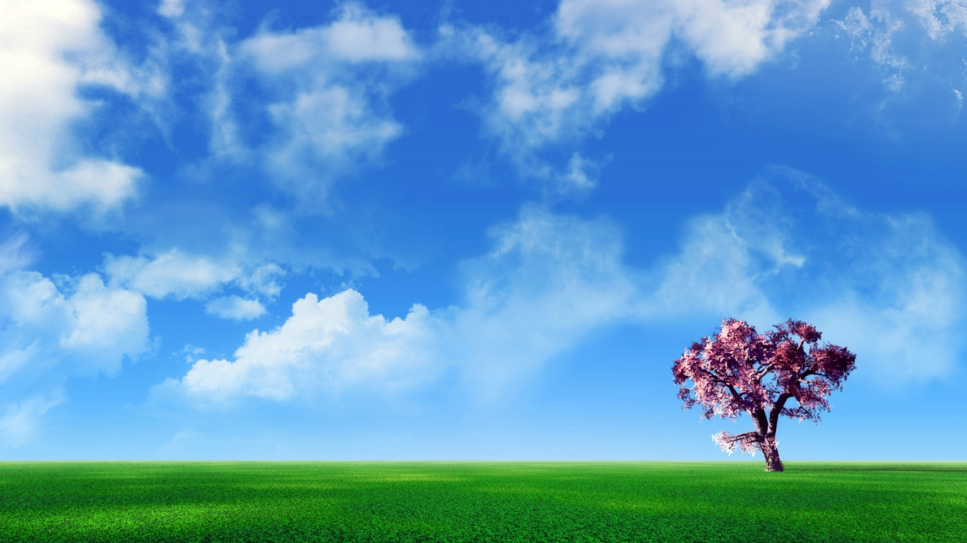 wallpapers wide 1366x768 pink - photo #7