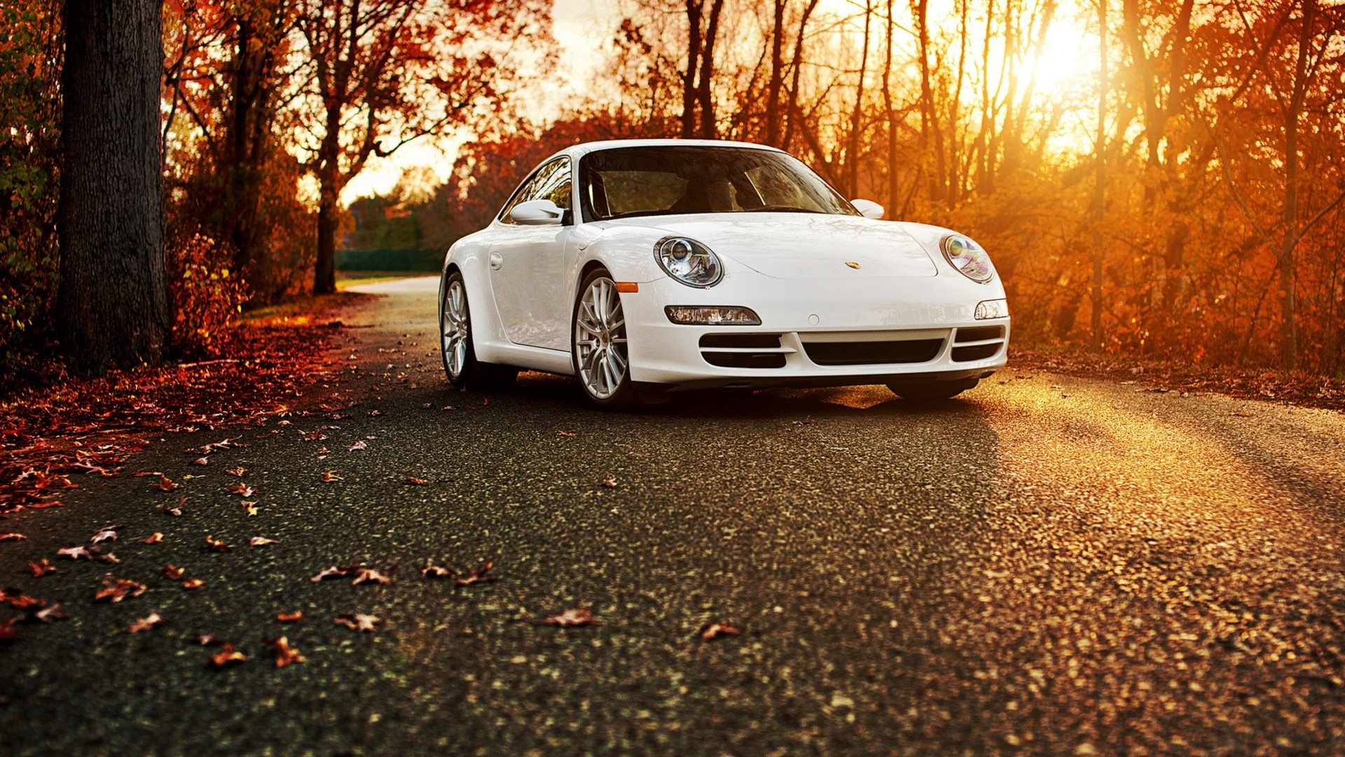 1920x1080 porsche 911 autumn how to set wallpaper on your desktop click the download link from above and set the wallpaper on the desktop from your os