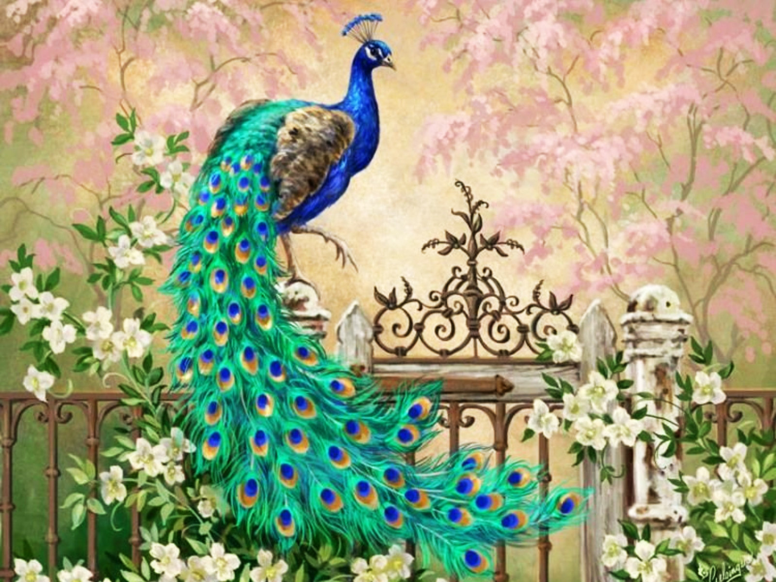 Pretty peacock garden gate wallpapers pretty peacock for Pretty wallpaper for walls