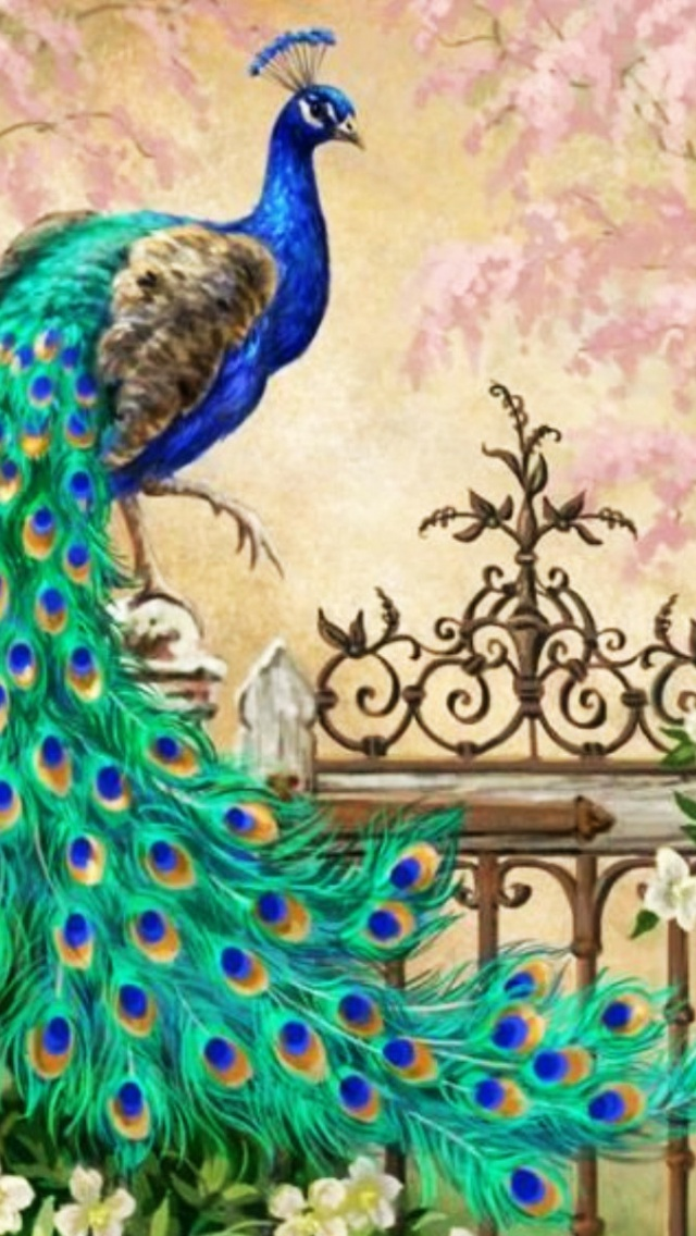 640x1136 Pretty Peacock Garden Gate Iphone 5 Wallpaper