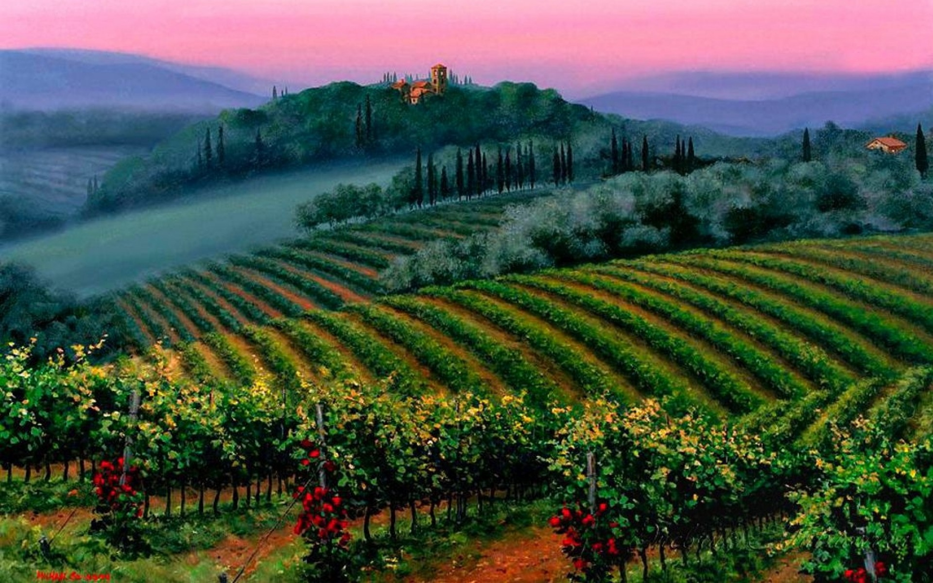 pretty vineyard pink sky italy wallpapers