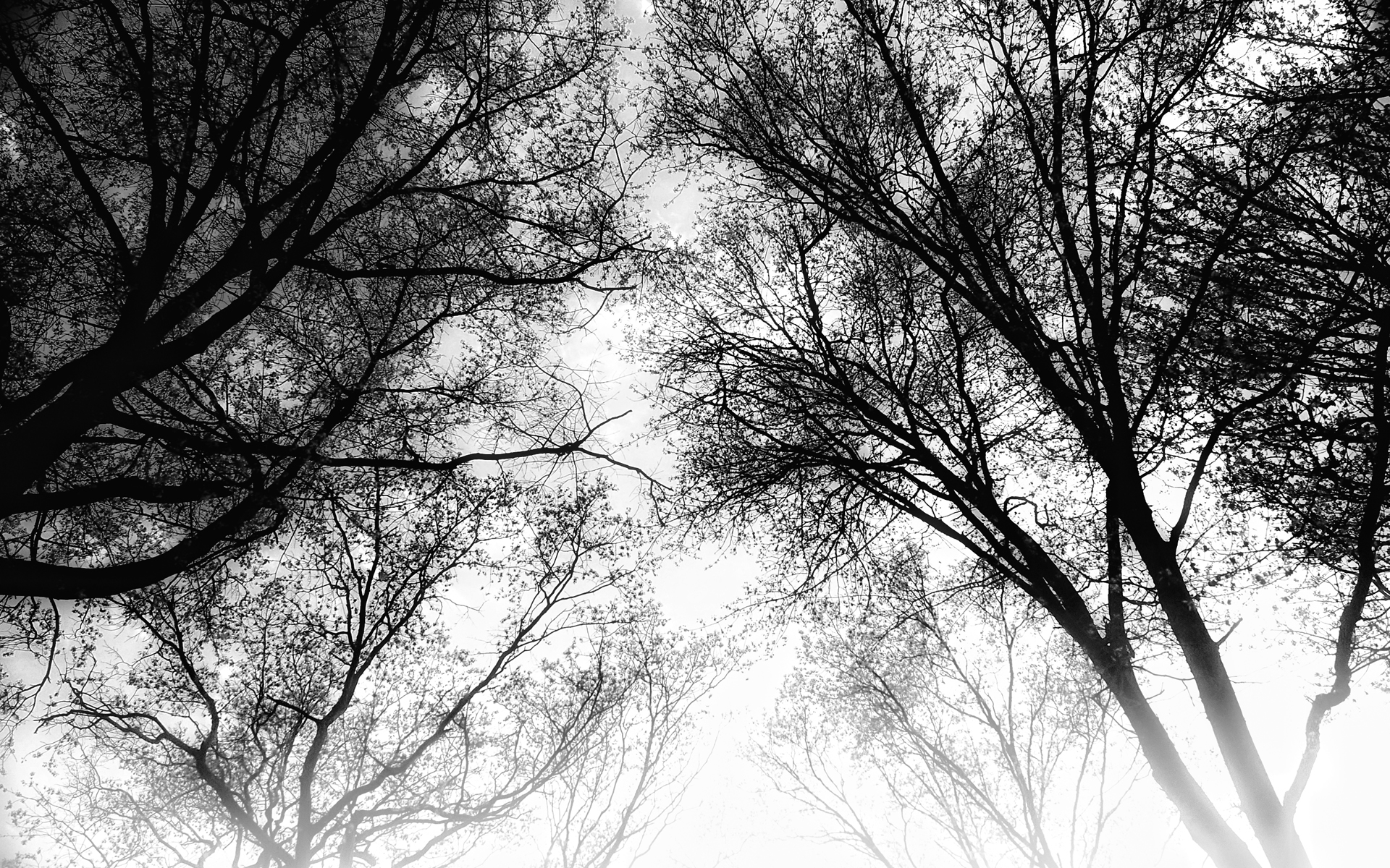 1920x1200 Rahway Sky BW desktop PC and Mac wallpaper