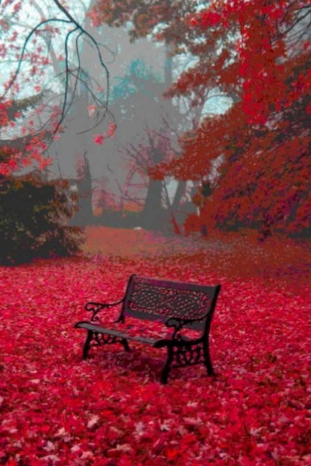 640x960 Red Autumn Carpet Bench Tree Iphone 4 Wallpaper