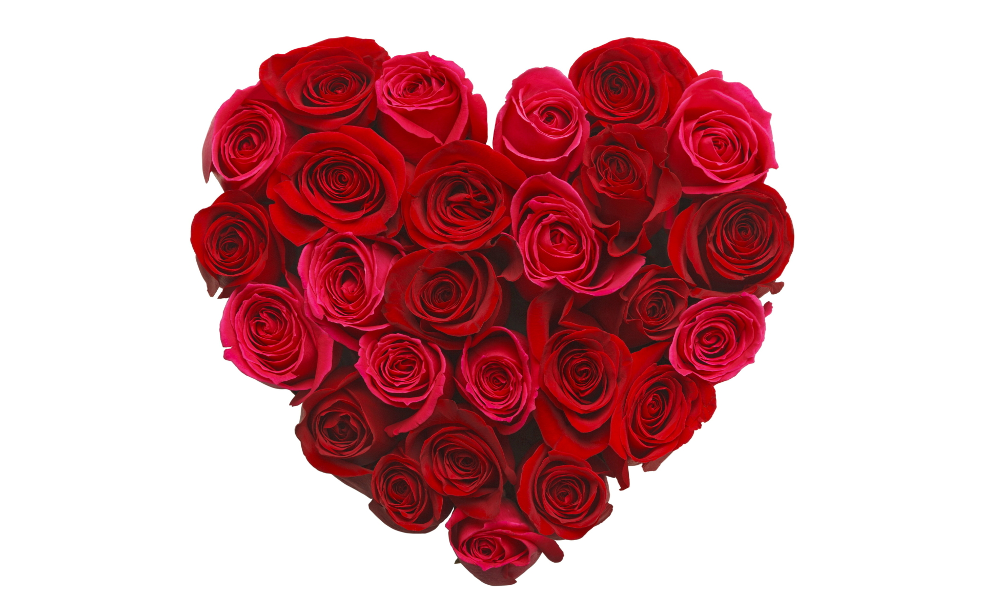 heart and roses background - photo #16