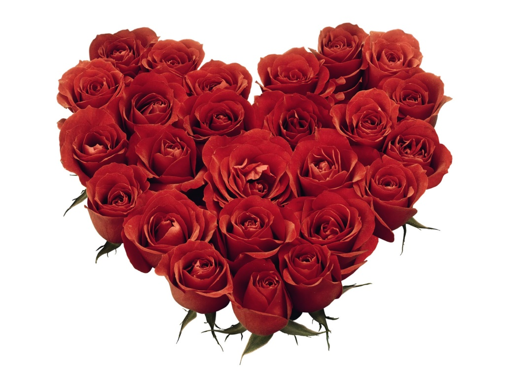 1024x768 Red Roses Heart