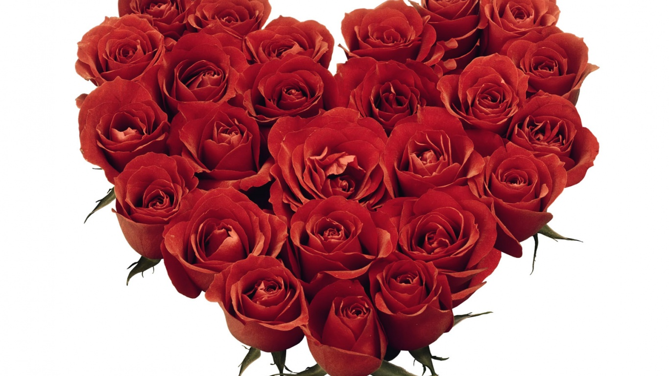 1366x768 Red Roses Heart
