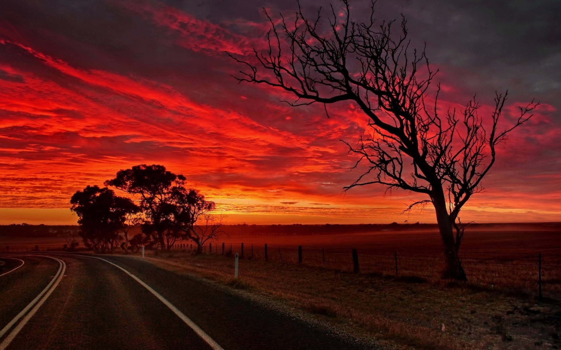 Red Sunset Road Trees Field Wallpapers Red Sunset Road Trees Field Stock Photos