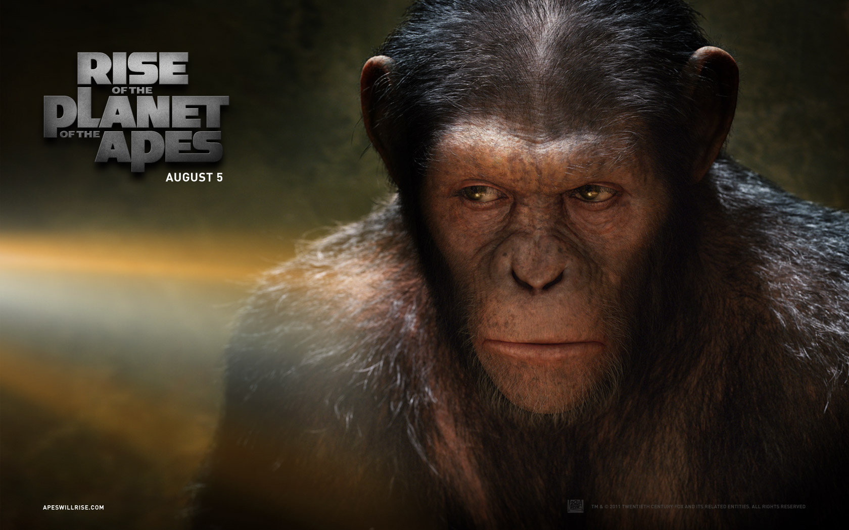 1680x1050 Rise of the Planet of the Apes: Caesar desktop ...