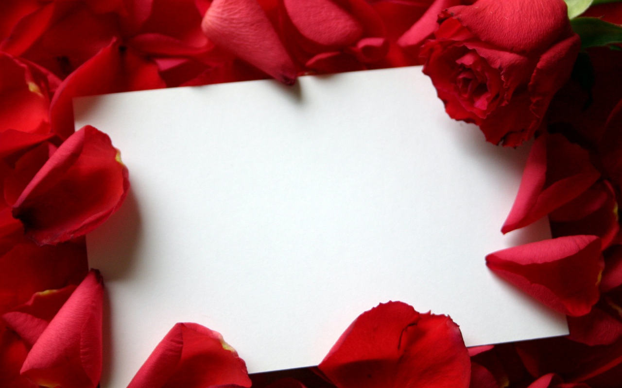 1280x800 Roses and letter
