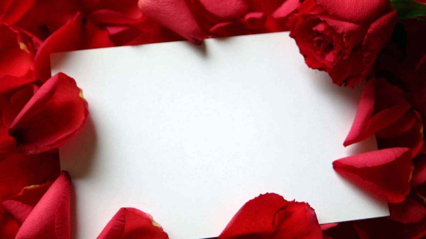 1366x768 Roses and letter