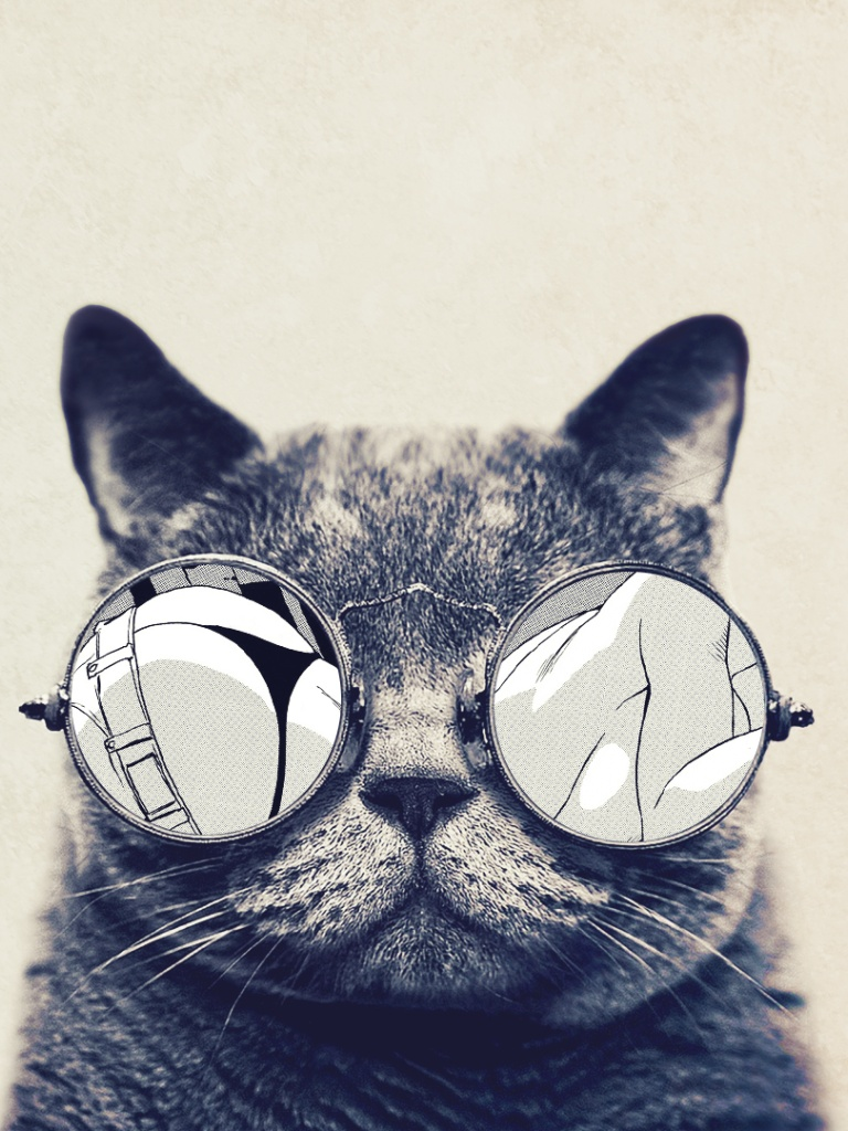 768x1024 Round Glasses Cute Cat Ipad mini wallpaper
