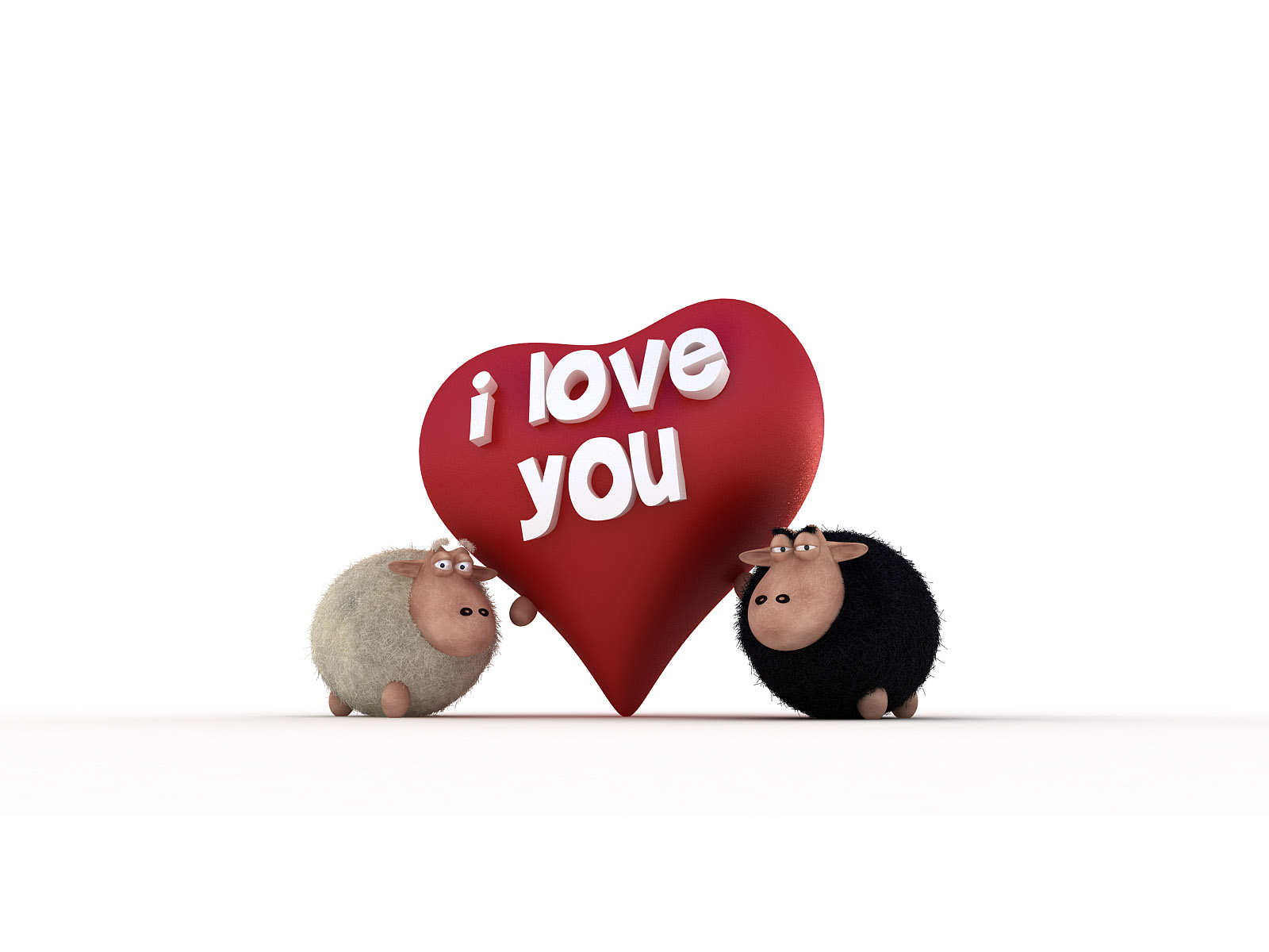 1600x1200 Sheeps - I Love You desktop wallpapers and stock photos