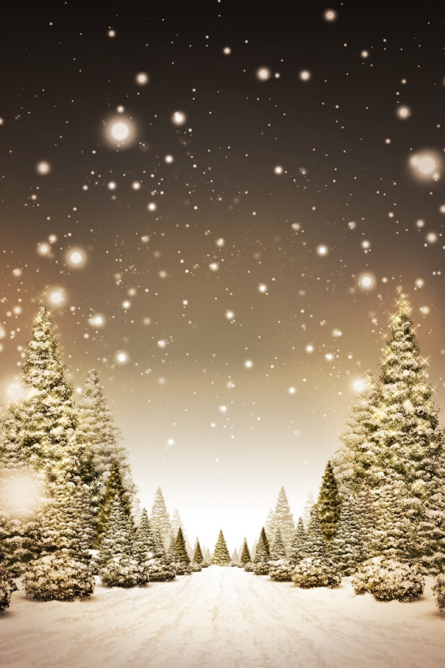 snow path wallpapers - photo #7