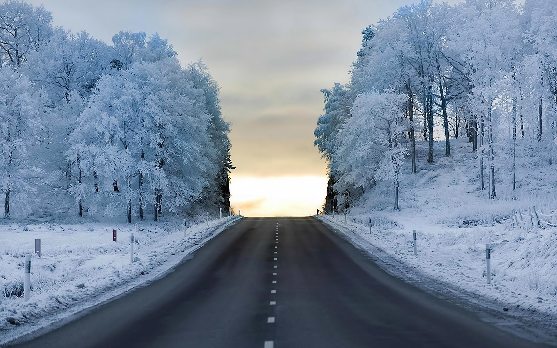Snow White Forest Hilly Street wallpapers | Snow White ...