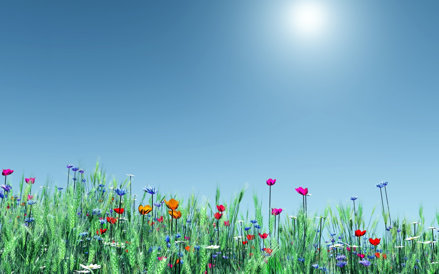 Good Wallpaper Mac Spring - spring-flowers_wallpapers_23570_1440x900  Perfect Image Reference_274156.jpg