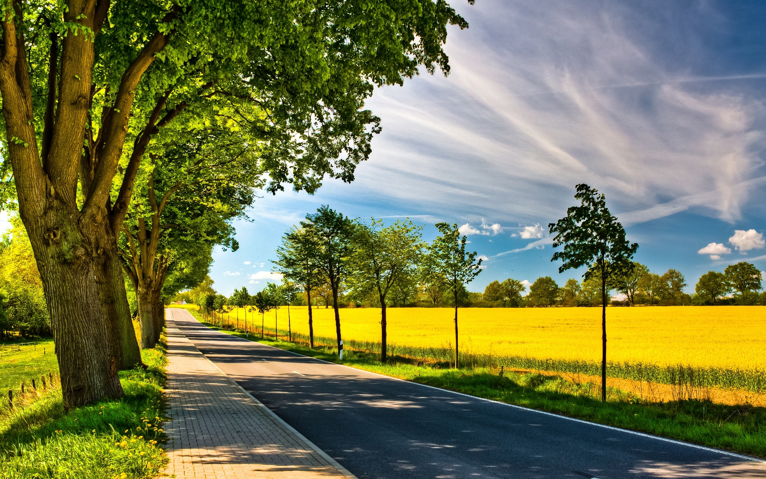 spring road wallpapers spring road stock photos