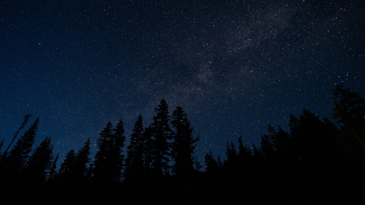 1280x720 starry sky, trees, night, radi