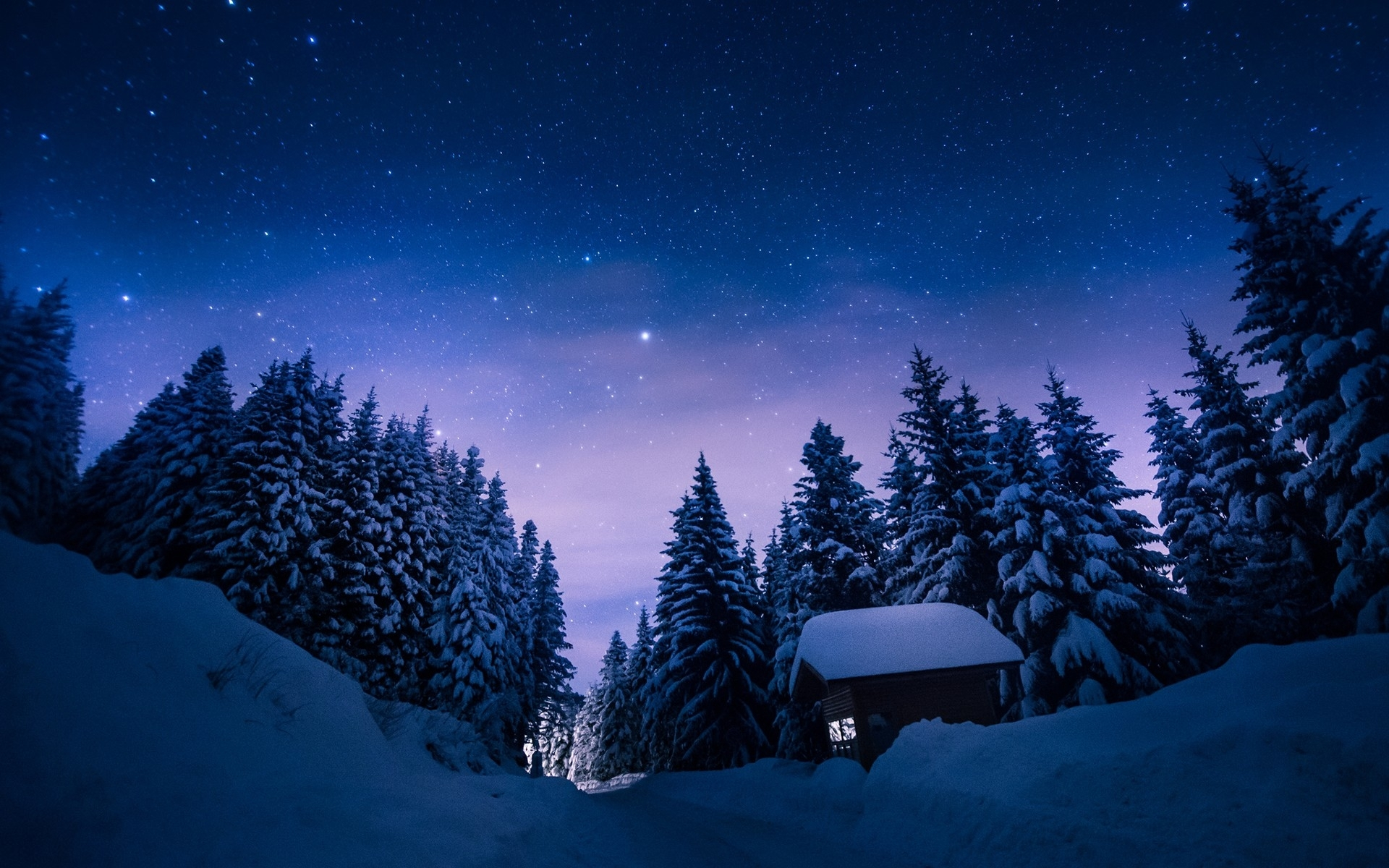 stars night snow forest house wallpapers stars night