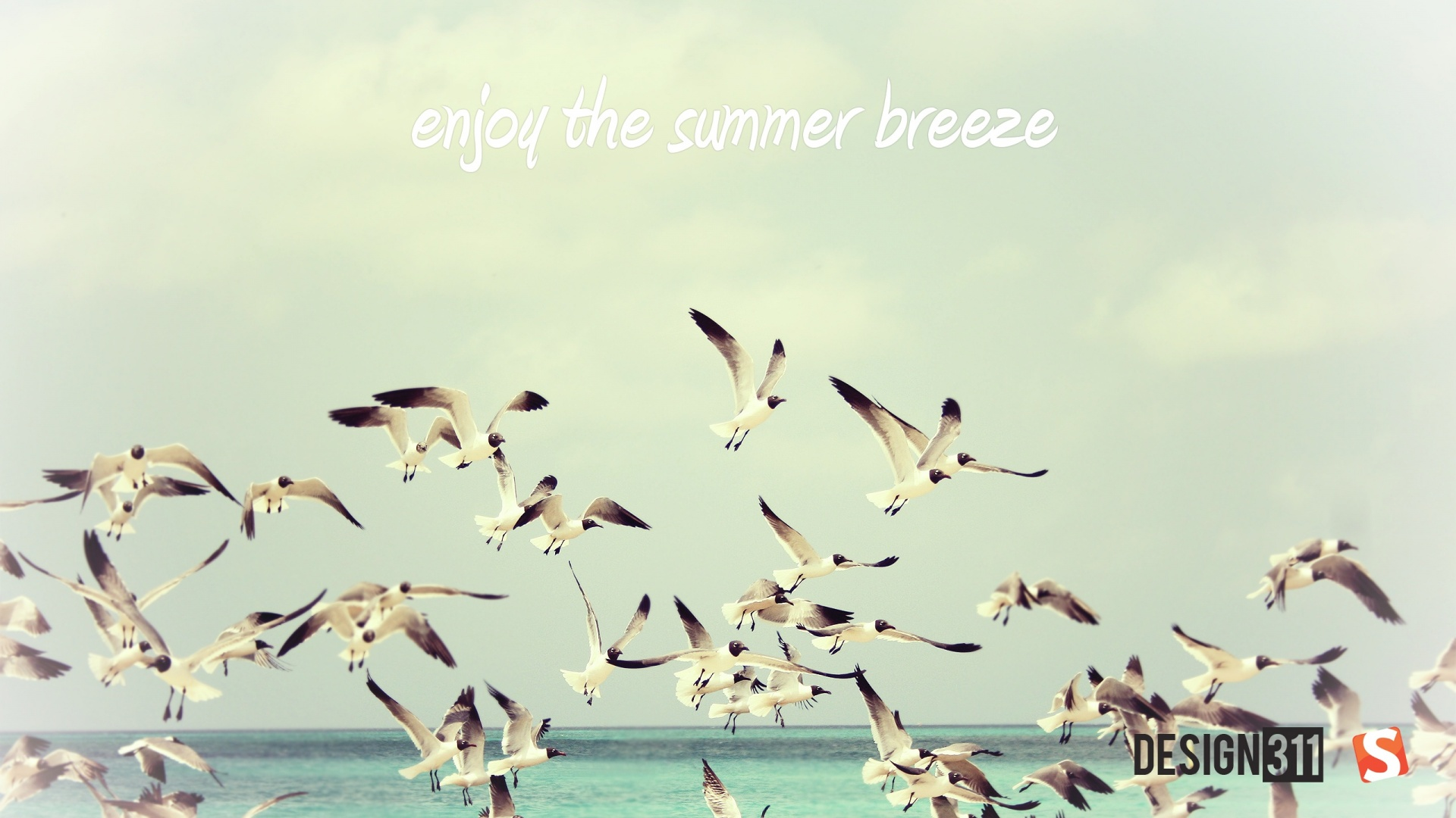 1920x1080 summer breeze desktop pc and mac wallpaper