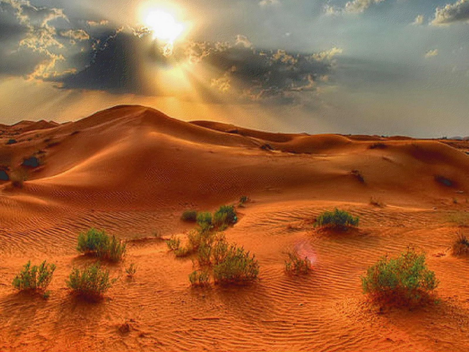 1600x1200 sunlight desert desktop pc and mac wallpaper - Wallpapers pc ...