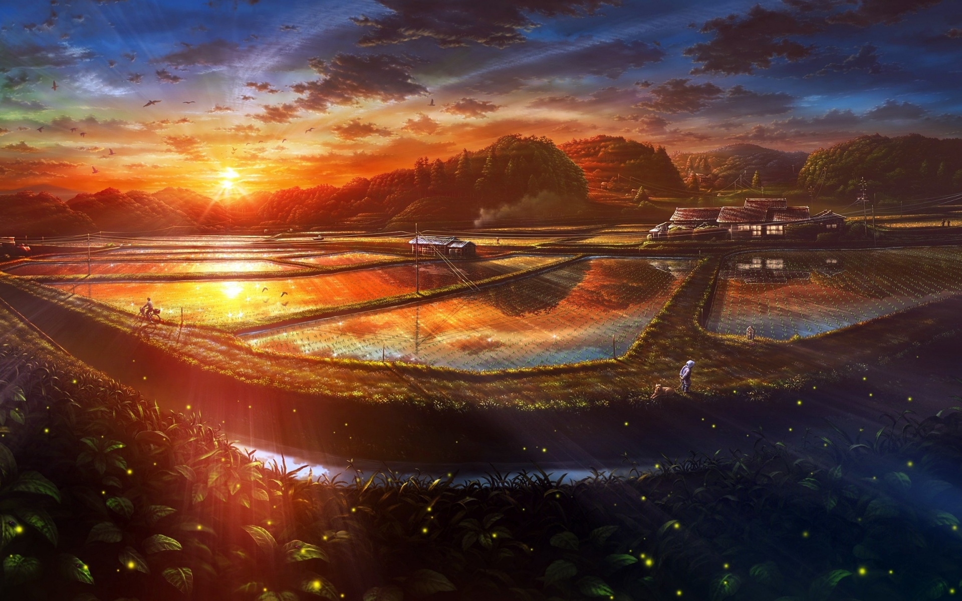 sunset anime scenery drawn wallpapers sunset anime