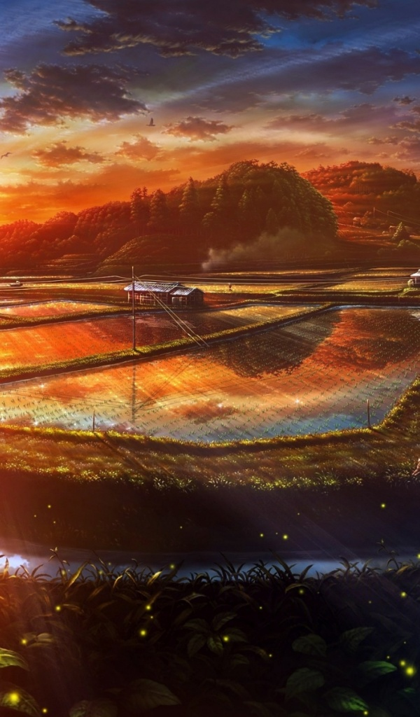 600x1024 sunset anime scenery drawn desktop pc and mac wallpaper