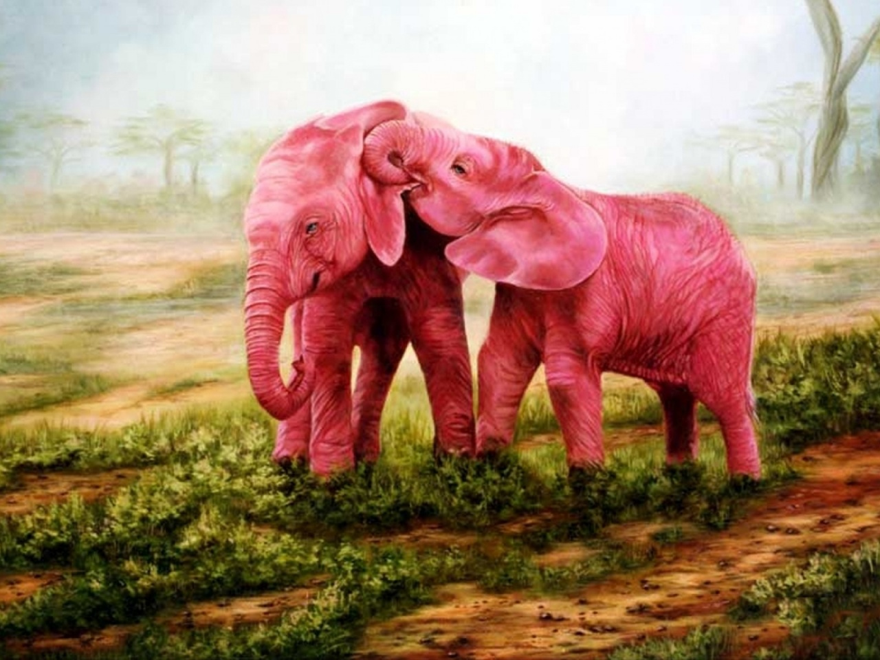 1280x720 Sweet Pink Elephants Couple
