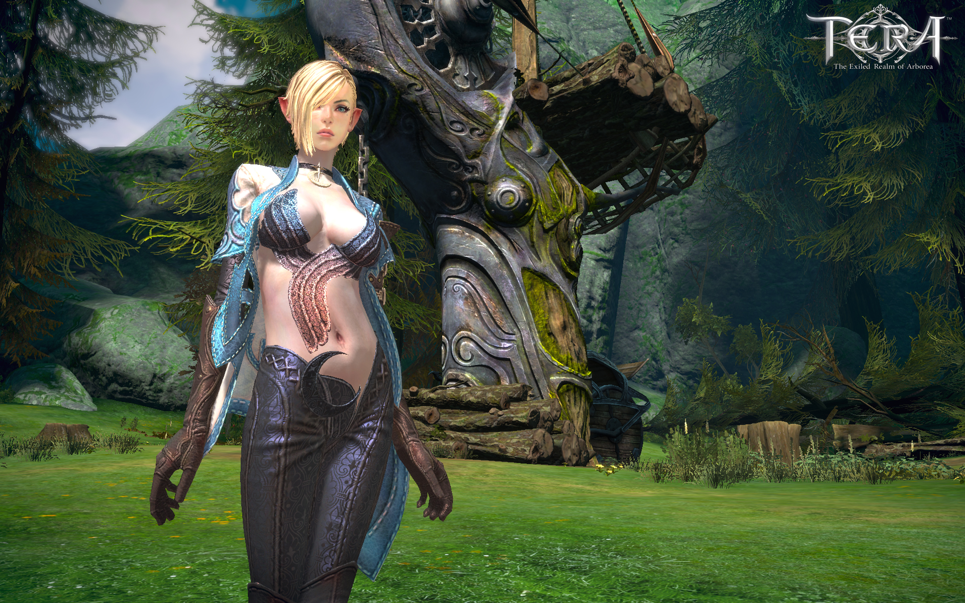 1920x1200 TERA desktop PC and Mac wallpaper