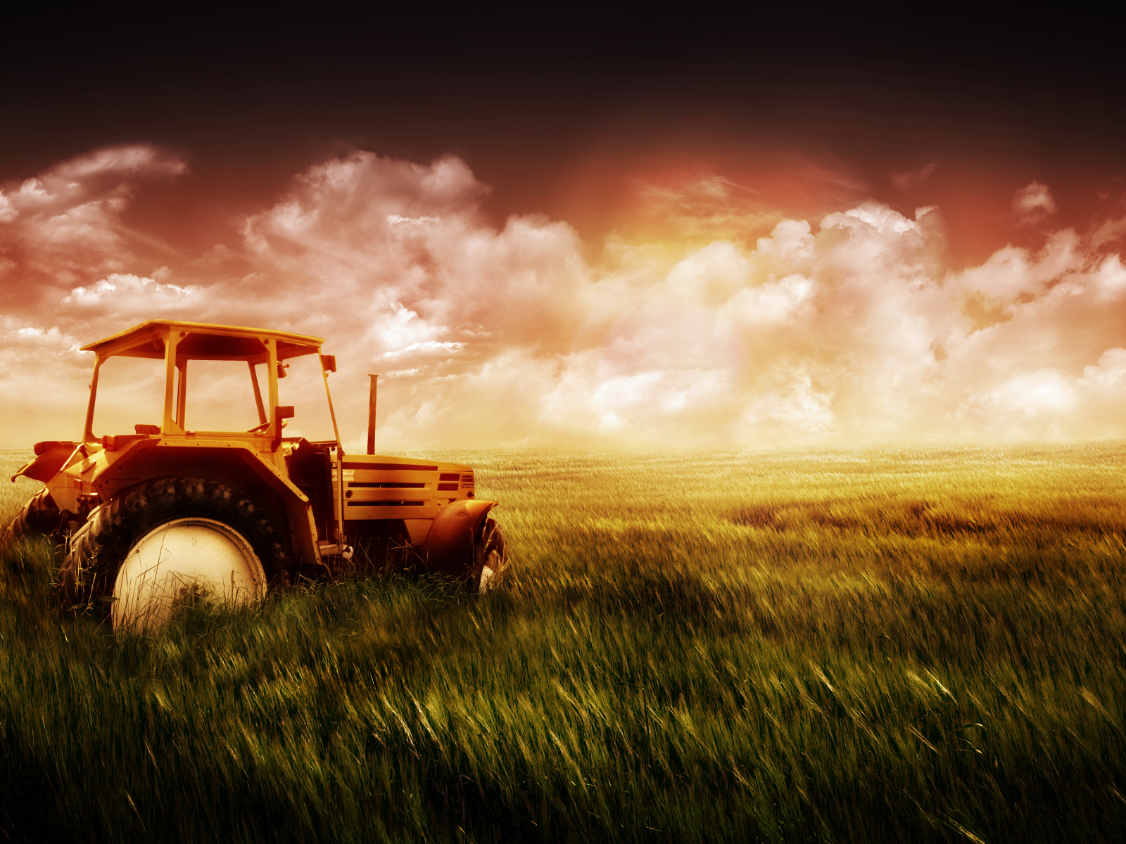 Image: Tractor and grass wallpapers and stock photos. «
