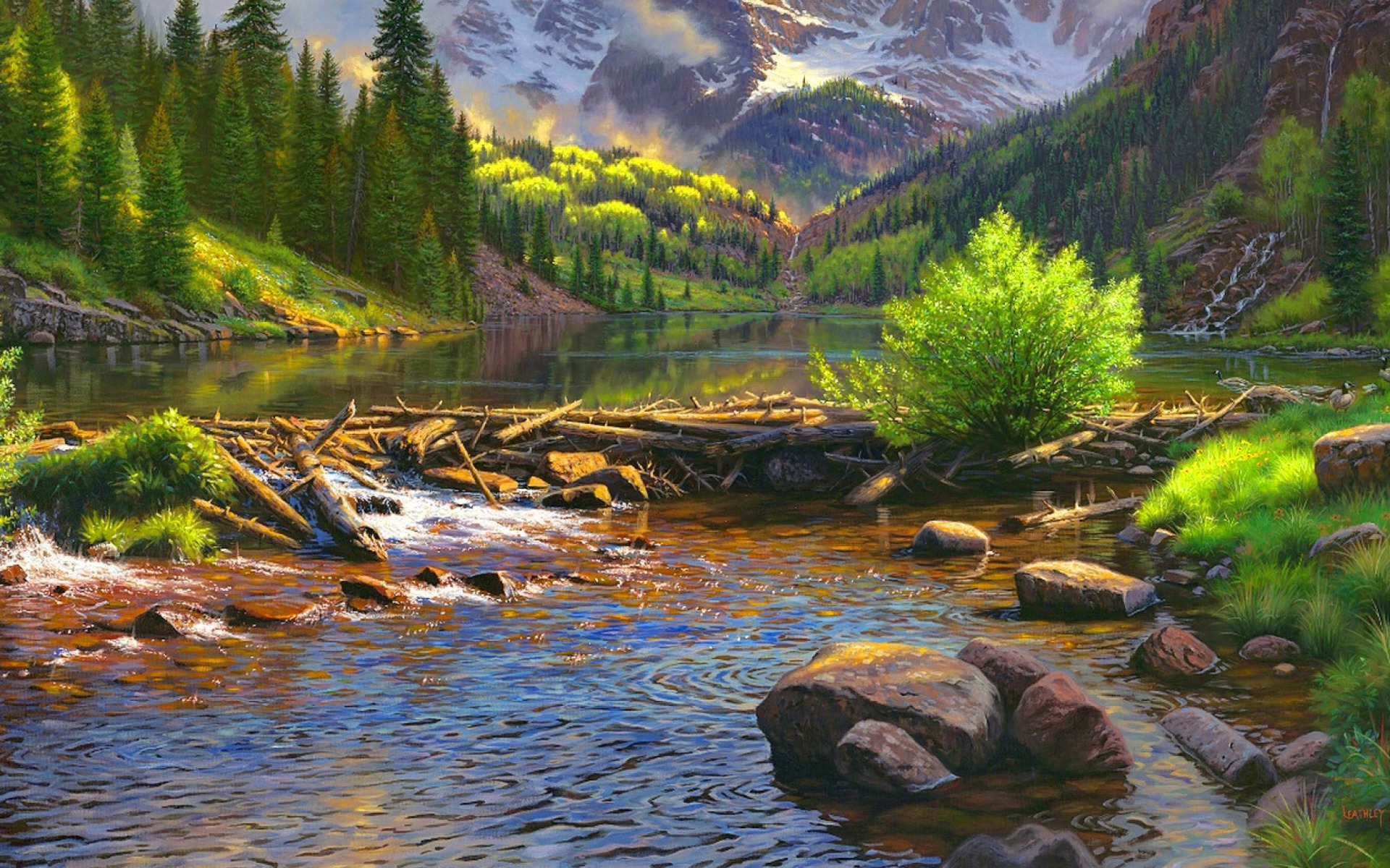 Trees River Wood Rocks Grass wallpapers | Trees River Wood ...  River