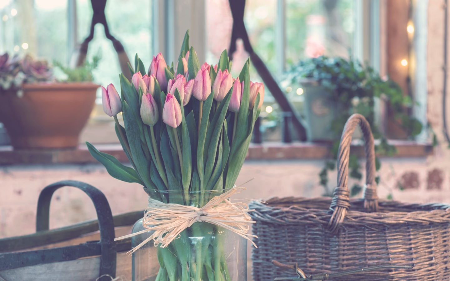 1440x900 tulips_bouquet_vase
