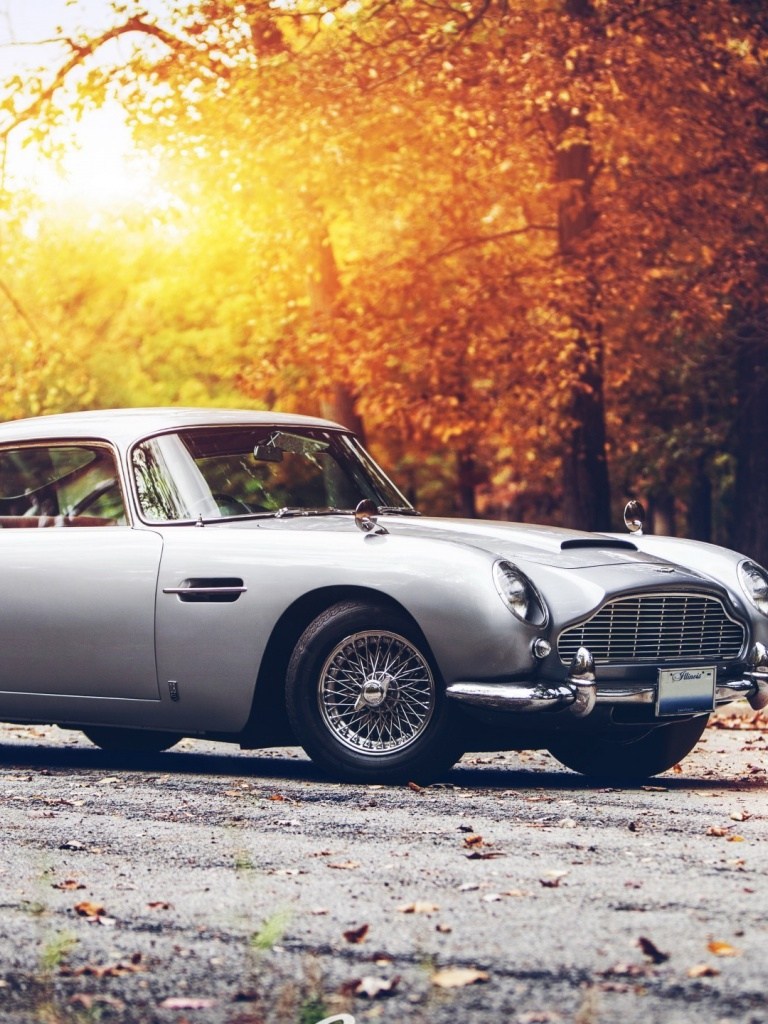 768x1024 vintage aston martin db5 ipad mini wallpaper. Black Bedroom Furniture Sets. Home Design Ideas