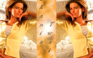 Shania Twain Wall 8 wallpapers and stock photos