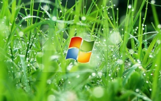 XP Logo and grass wallpapers and stock photos