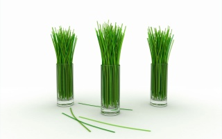 Random: Lemon grass